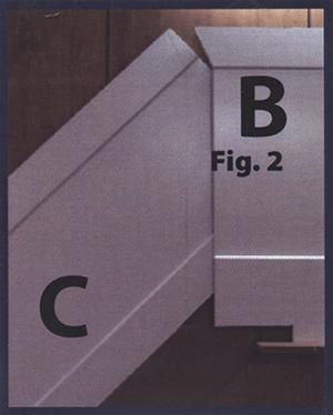Fig2-bc